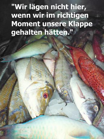Fische_text2_klein